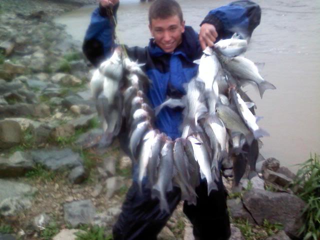 Sandusky River Whitebass run-Now starting!! 0517101906