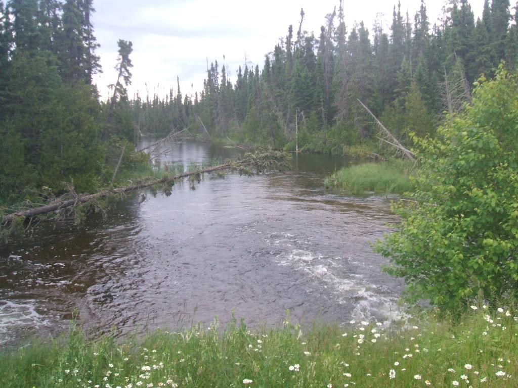 Pasha Lake-Canadian Wilderness Fishing 049