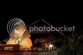 Galerie photos de Chaton21 648LasVegas