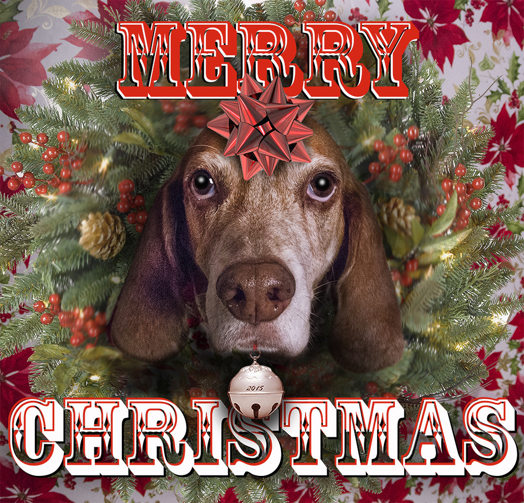 Happy New Year CAD Merry%20christmas%2015_zpsjukl8slz