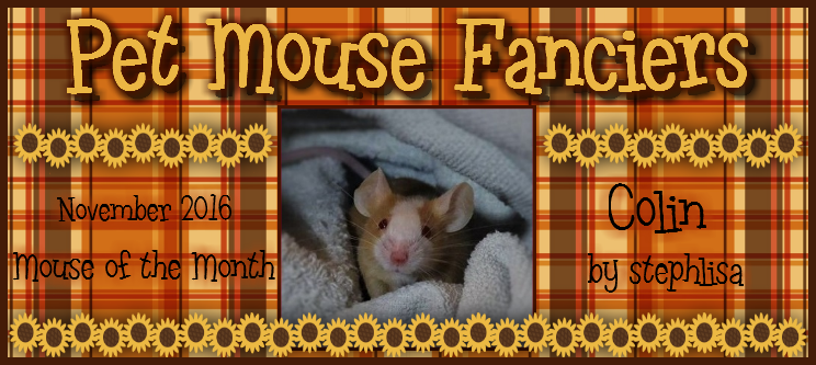 """Vote for """"Mouse of the Month"""" Contest!!! - Page 2 Colin%20banner2"""