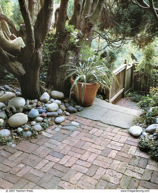 plantar piedras 041069026_xlg