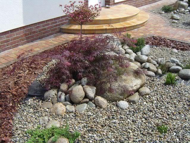 plantar piedras MacizoACER_PAL