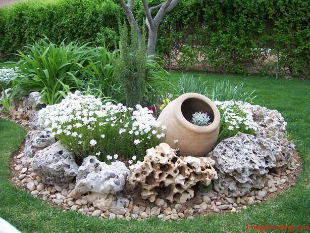 plantar piedras Rocalla