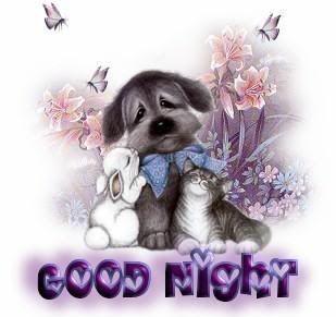 ♥.·:* JAN 2012 GOOD NIGHT FRIENDS *:·.♥  GoodNightanimals