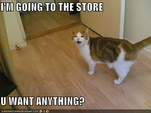 Funny Cats Funny-pictures-cat-going-to-store