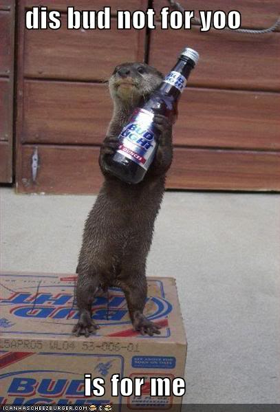 Funny Cats Funny-pictures-greedy-otter-beer-bu