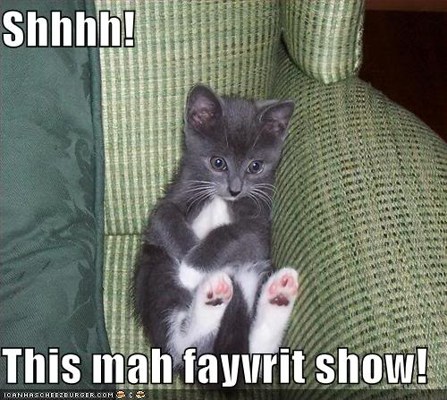 Funny Cats Funny-pictures-kitten-watches-tv