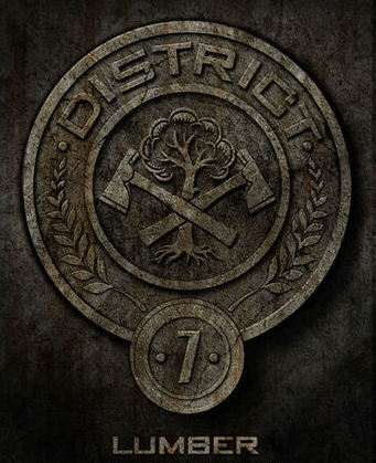 Welcome to District 7! Lunapic_134941382772108_20