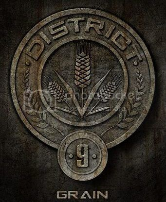 Welcome to District 9! Lunapic_134941382772108_27