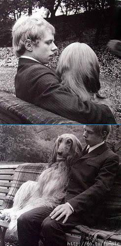 ljubimci životinja - Page 5 381966663_21da9c83be