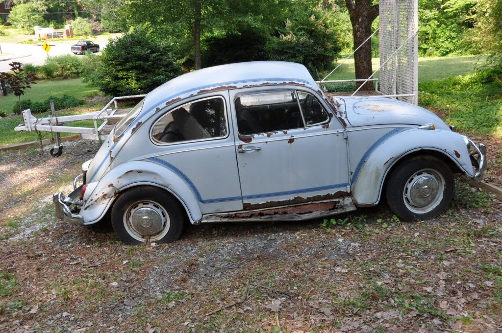 "'67 Beetle ""Judy"" 253"