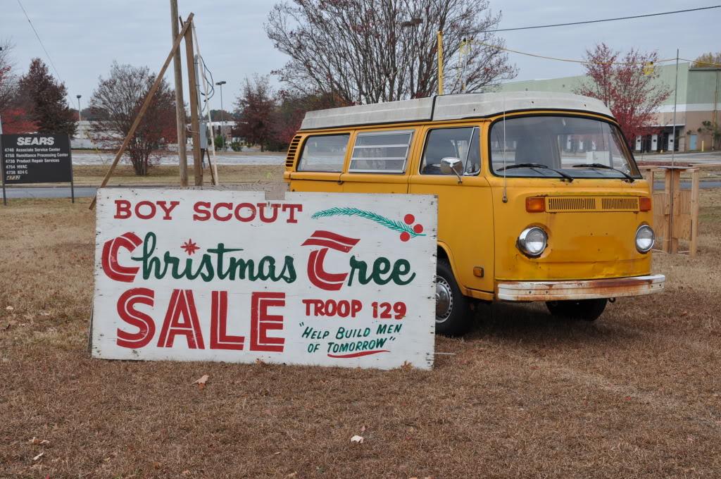Christmas Trees for Sale Treelotsetup043