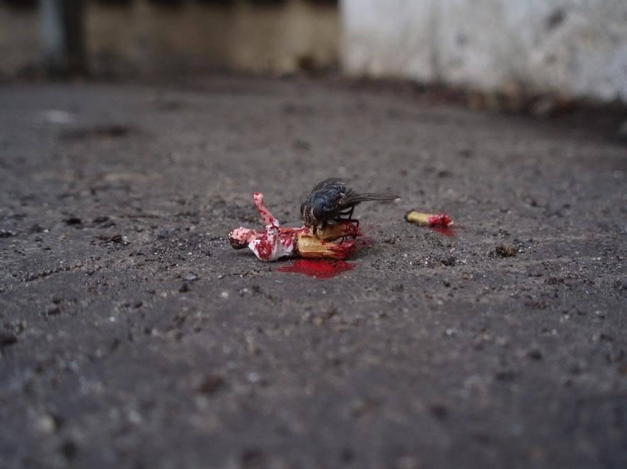 Mundos en miniatura [FotografiASS & Design] Feast201
