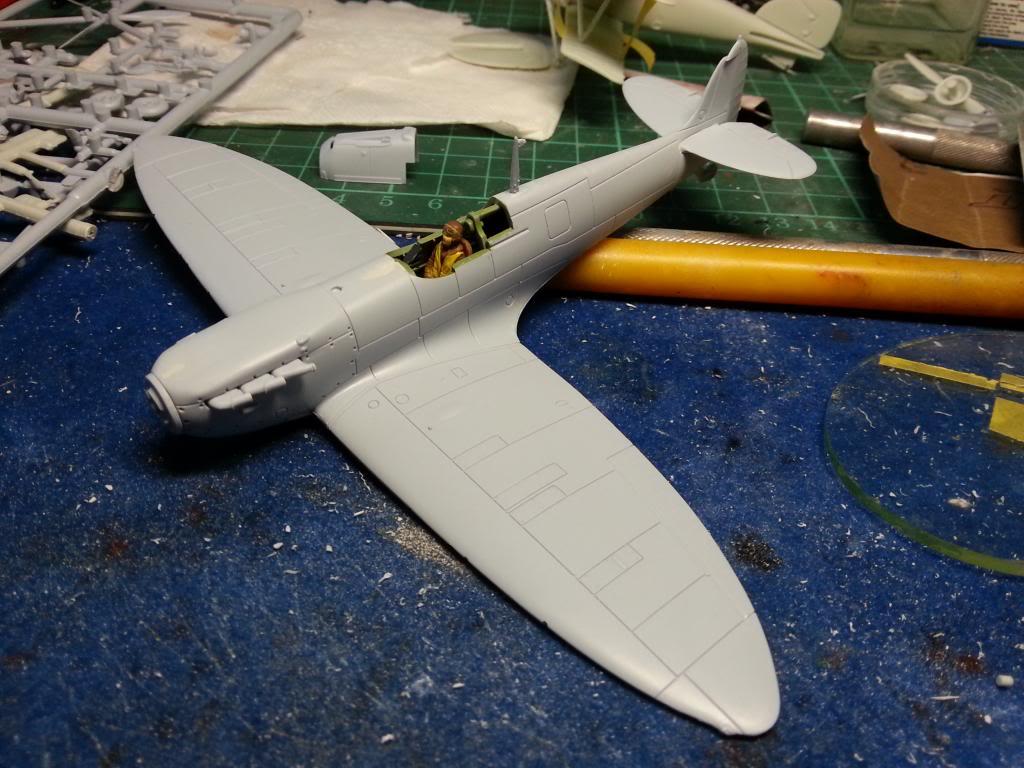 Albatross 1/72 Declared Complete!  20131215_091504_zps2b3db01a