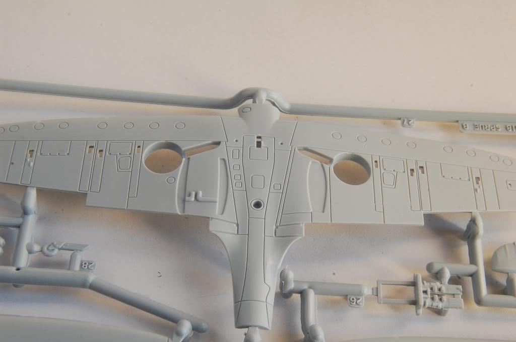 Albatross 1/72 Declared Complete!  DSC_2979_zps3e0146d2