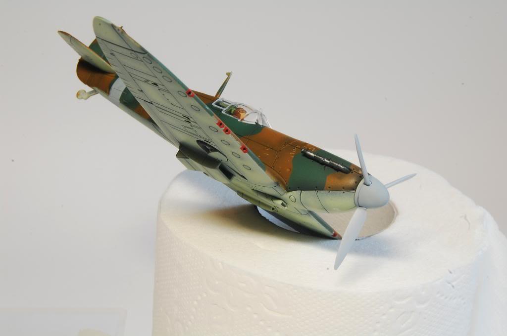 Albatross 1/72 Declared Complete!  - Page 2 DSC_3034_zpsb5288024