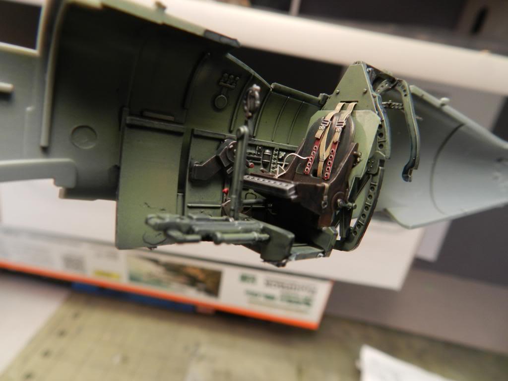 Albatross 1/72 Declared Complete!  PitK7_zps3e7ac744