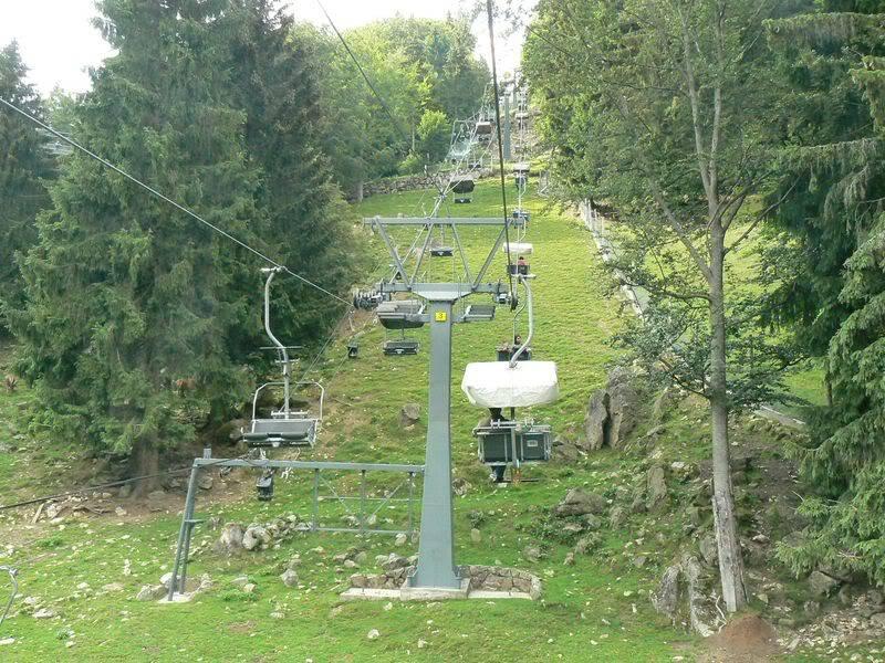 [T][P] 12.06.2011 : Steinwasen Park P1130433