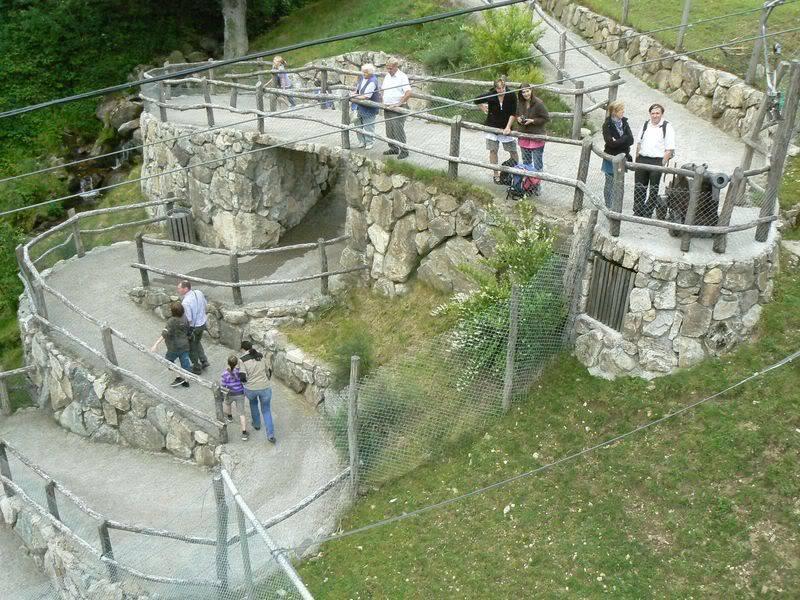 [T][P] 12.06.2011 : Steinwasen Park P1130462
