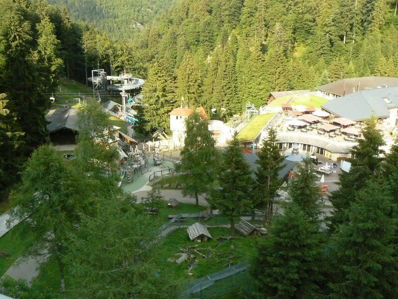 [T][P] 12.06.2011 : Steinwasen Park P1130542