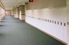 Skolegangene