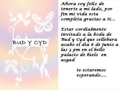 BODA DE BUD Y SYD Bodade11