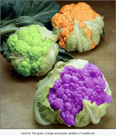Colourful cauliflowers - not photoshopped 2-2