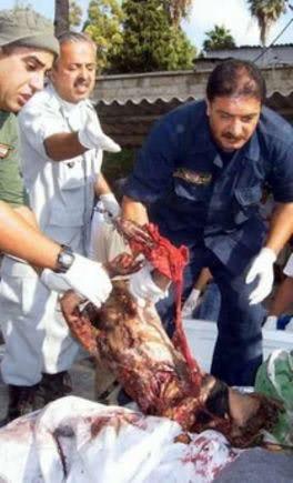 شاهد هنا : طفلة اسرائيلية تكتب رسالة على صاروخ .. Genocide97