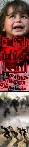 استشهاد 271 فلسطينيا في غارات جوية اسرائيلية Gaza