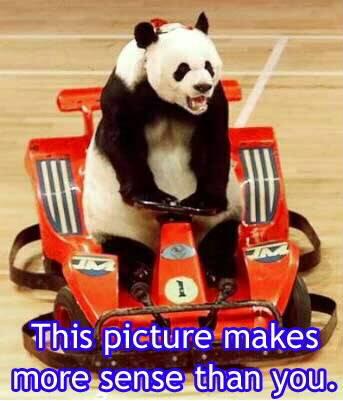 Random Funny Pictures Thread:) Panda-1