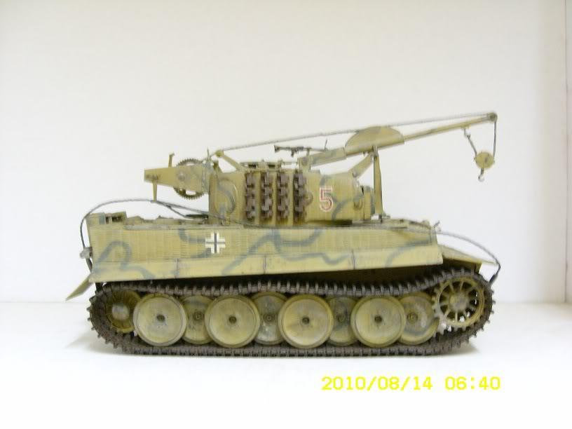 Yaminz Military Model Collection Bergetiger_02