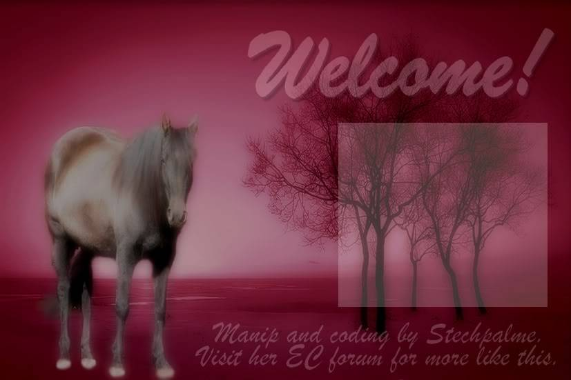 Canadian Horse Premade_4