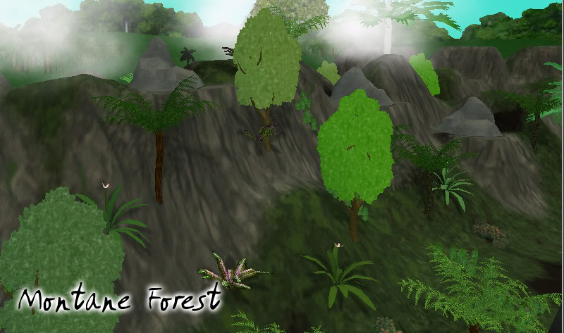 Topics tagged under biome on User - Made Creations MontaneForest2