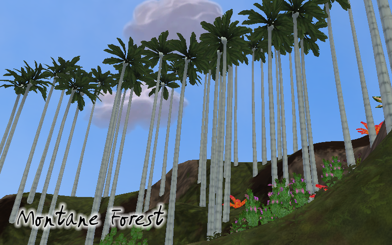 Topics tagged under biome on User - Made Creations WaxPalm