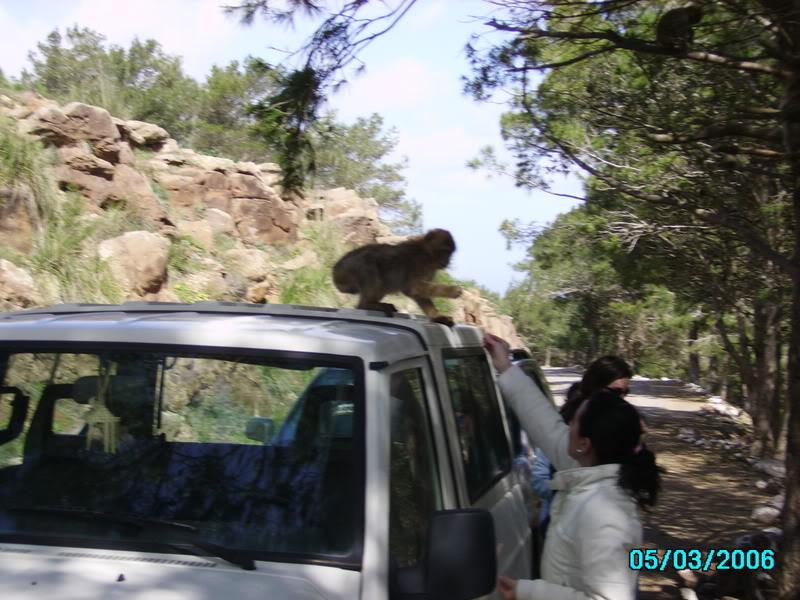 صور من إقليم الناظور في منطقة الريف شمال المغرب 126848