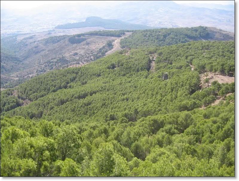 صور من إقليم الناظور في منطقة الريف شمال المغرب Taquigriat3