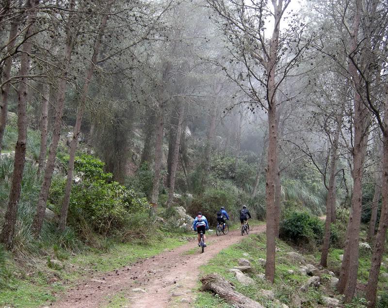 صور من إقليم الناظور في منطقة الريف شمال المغرب Gorogo15