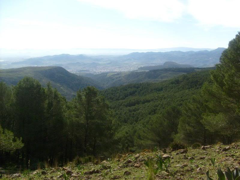 صور من إقليم الناظور في منطقة الريف شمال المغرب Jaadar-gorogo