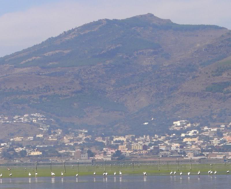 صور من إقليم الناظور في منطقة الريف شمال المغرب Marchica9-