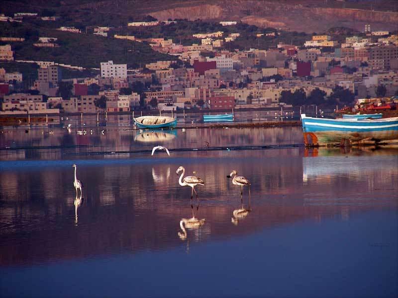 صور من إقليم الناظور في منطقة الريف شمال المغرب Marchicabniensar
