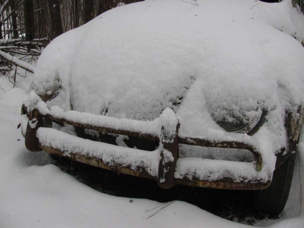 Snow Day north GA IMG_0171