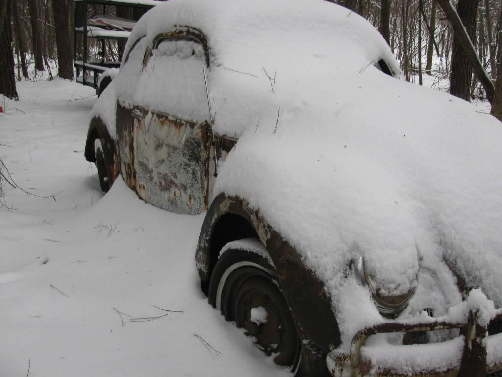 Snow Day north GA IMG_0172