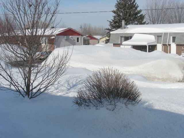 Pour ceux et celles qui s'ennuient de la neige.P.3 Neige10