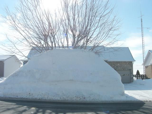 Pour ceux et celles qui s'ennuient de la neige.P.3 Neige2