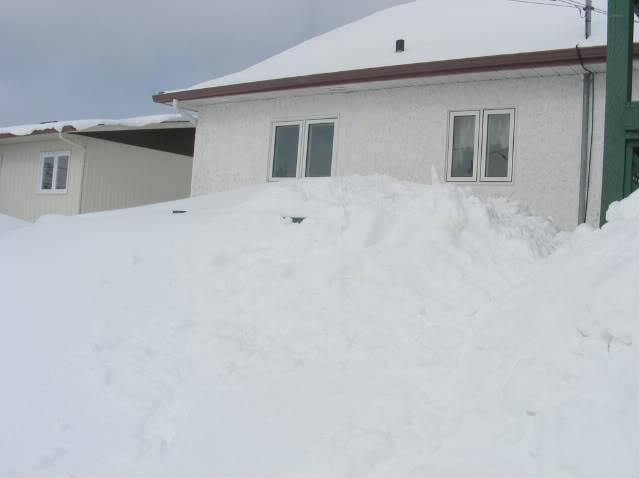 Pour ceux et celles qui s'ennuient de la neige.P.3 - Page 3 Neige23
