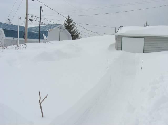 Pour ceux et celles qui s'ennuient de la neige.P.3 - Page 3 Neige25