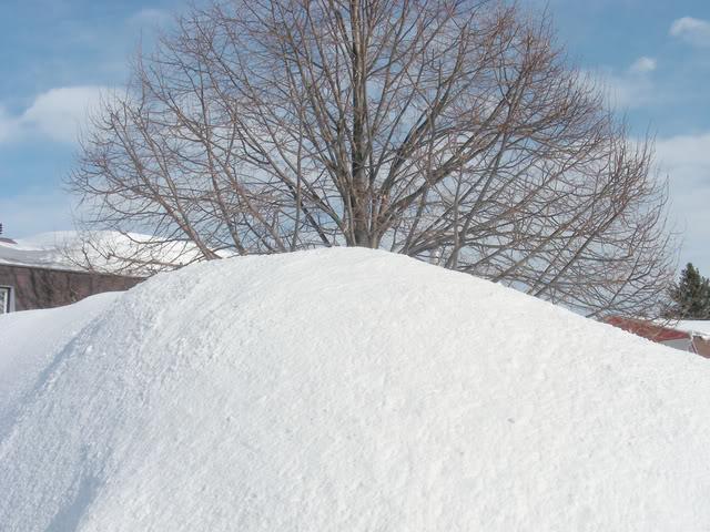 Pour ceux et celles qui s'ennuient de la neige.P.3 Neige5