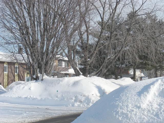 Pour ceux et celles qui s'ennuient de la neige.P.3 Neige7