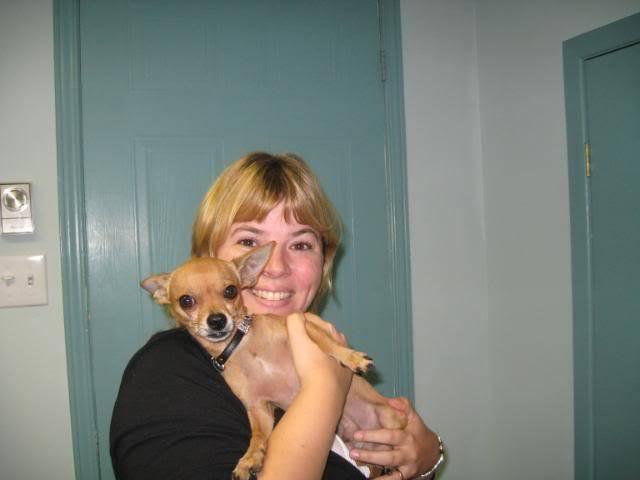 Mon ami bacha le chihuahua Octobre2008005
